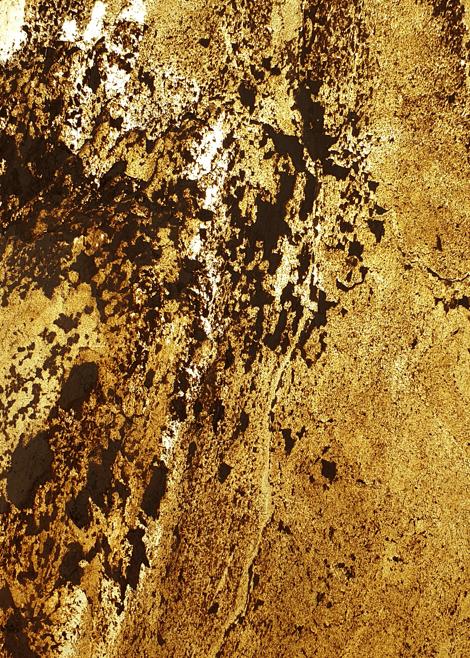 Autumn Cream Transparentny